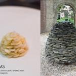 clams1-jpg